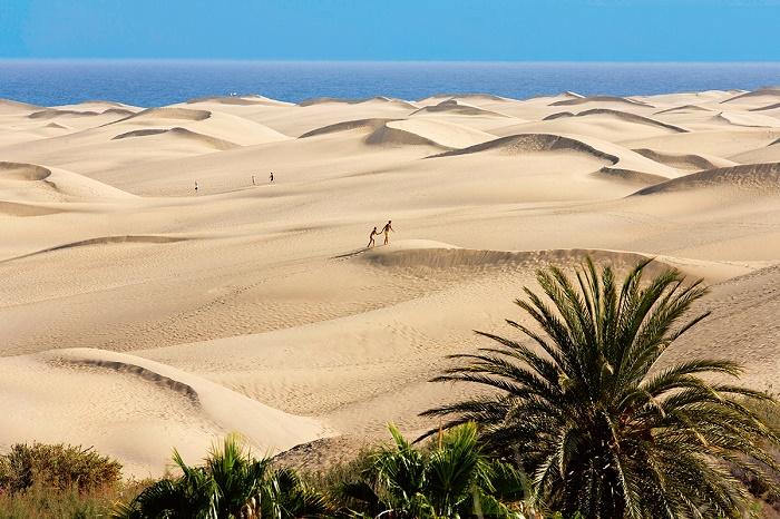 01A7M5GV - Sand dunes of Maspalomas, Playa del Ingles, Gran Canaria, Spain